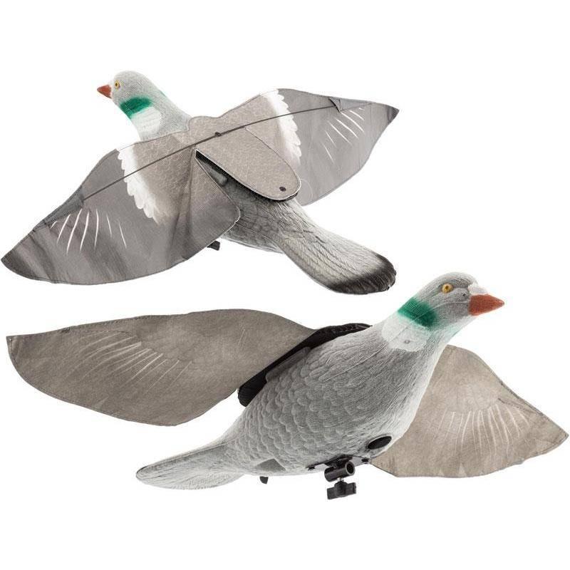 Appelant Europ Arm Super Flap Pigeon
