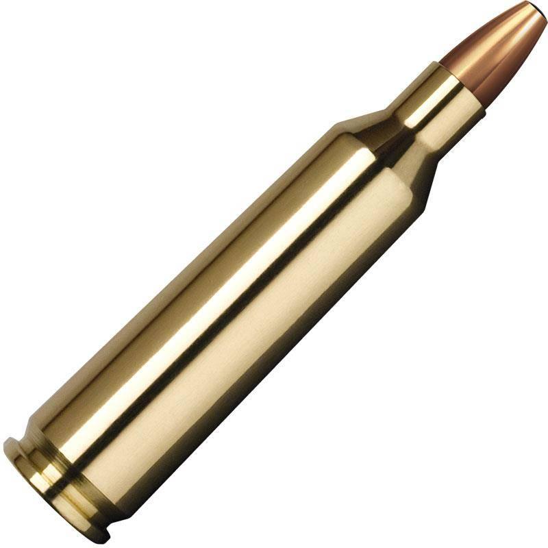 Balle De Chasse Norma Soft Point - 50Gr - Calibre 222 Rem