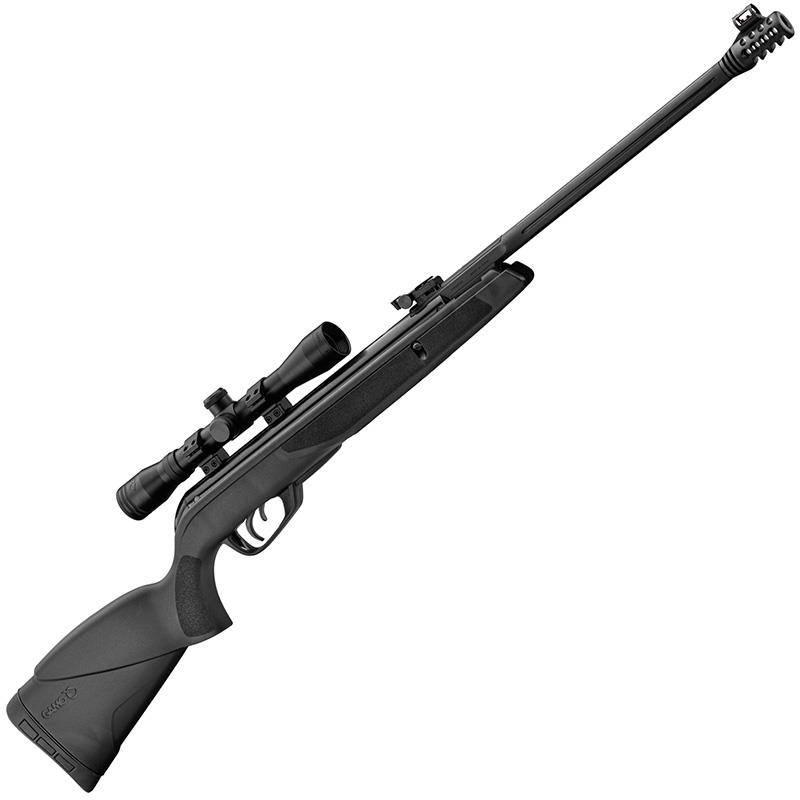 Carabine A Plomb Gamo Black Bear Avec Lunette