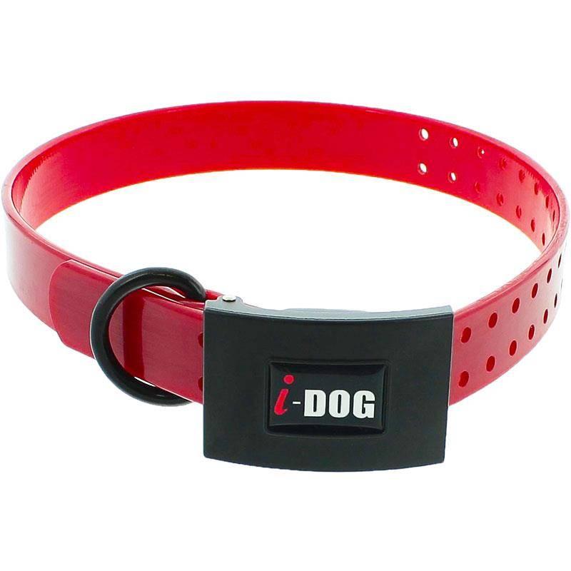 Collier Chien I-Dog Premium