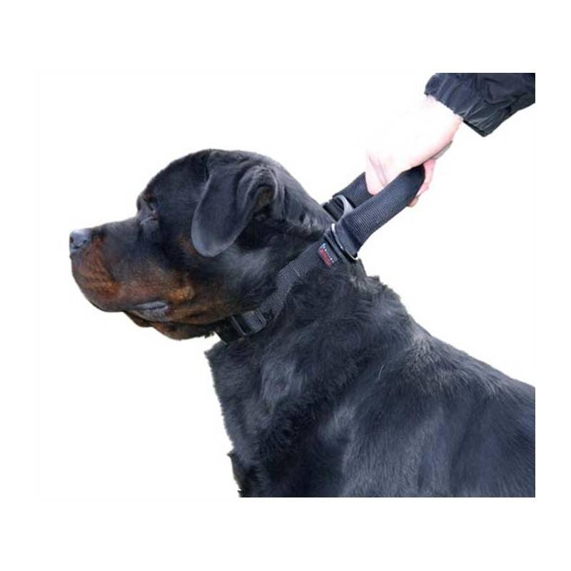 COLLIER CHIEN REGLABLE MARTIN SELLIER INTERVENTION
