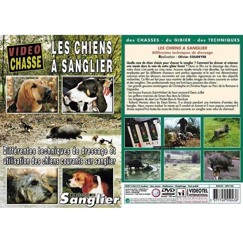 Dvd - Les Chiens A Sanglier